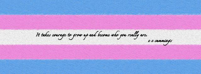 facebook_cover_transgender_flag_by_kabit-d7e9fry