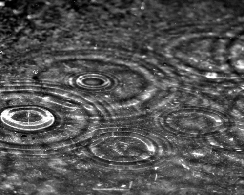 ws_Rain_drops_1280x1024